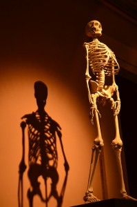 How to reduce your risk for osteoporosis